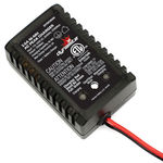 Dynamite 20W NiMH AC Battery Charger